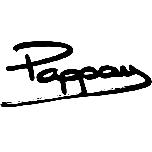 Pappay | artiste - graffeur